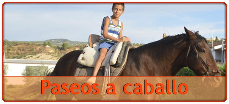 paseos-a-caballo-hipica-montar-caballos-malaga-andalucia