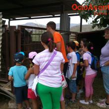 granja-escuela-lucena
