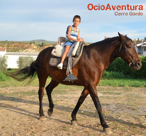 paseo-a-caballo-malaga