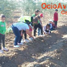 Excursión colegio Andalucía